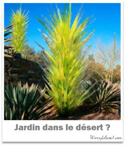 ThierryLeScoul.com - Jardin dans le désert