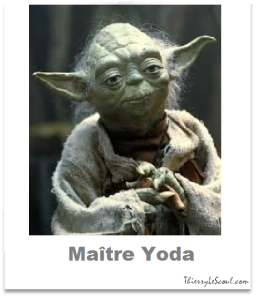 ThierryLeScoul.com -  Maître Yoda