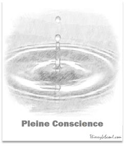 ThierryLeScoul - Pleine Conscience