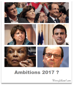 ThierryLeScoul - Ambitions 2017
