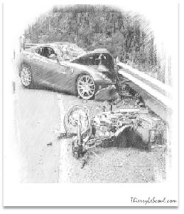 ThierryLeScoul -  Urgences et Crises